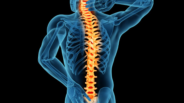 healthy and happy spine